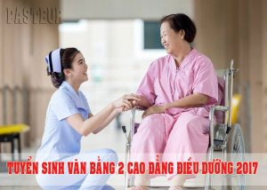van-bang-2-cao-dang-dieu-duong-2017-(1)