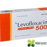 thuoc-levofloxacin-su-dung-co-an-toan-khong 2