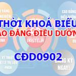 CDD0902