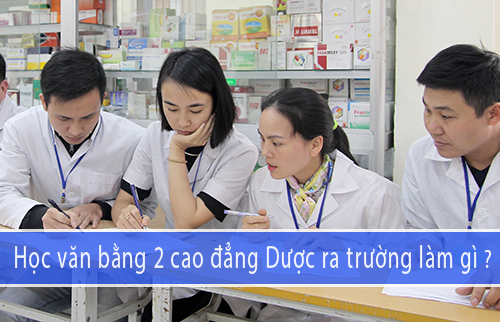 Cơ hội vừa học vừa làm nếu học Văn bằng 2 Cao đẳng Dược tại Hà Nội