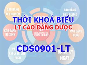 CDS0901-LT