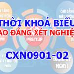 CXN0901-02