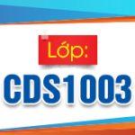 CDS1003 310x165px