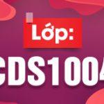 CDS1004 310x165px