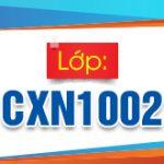 CXN1002 310x165px