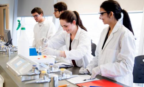 Làm việc tại các công ty dược phẩm luôn là mong ước của nhiều sinh viên chuyên ngành Dược