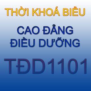 Thời khoá biểu lớp TDD1101